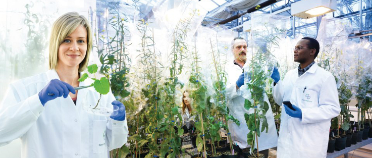 Join Bayer CropScience